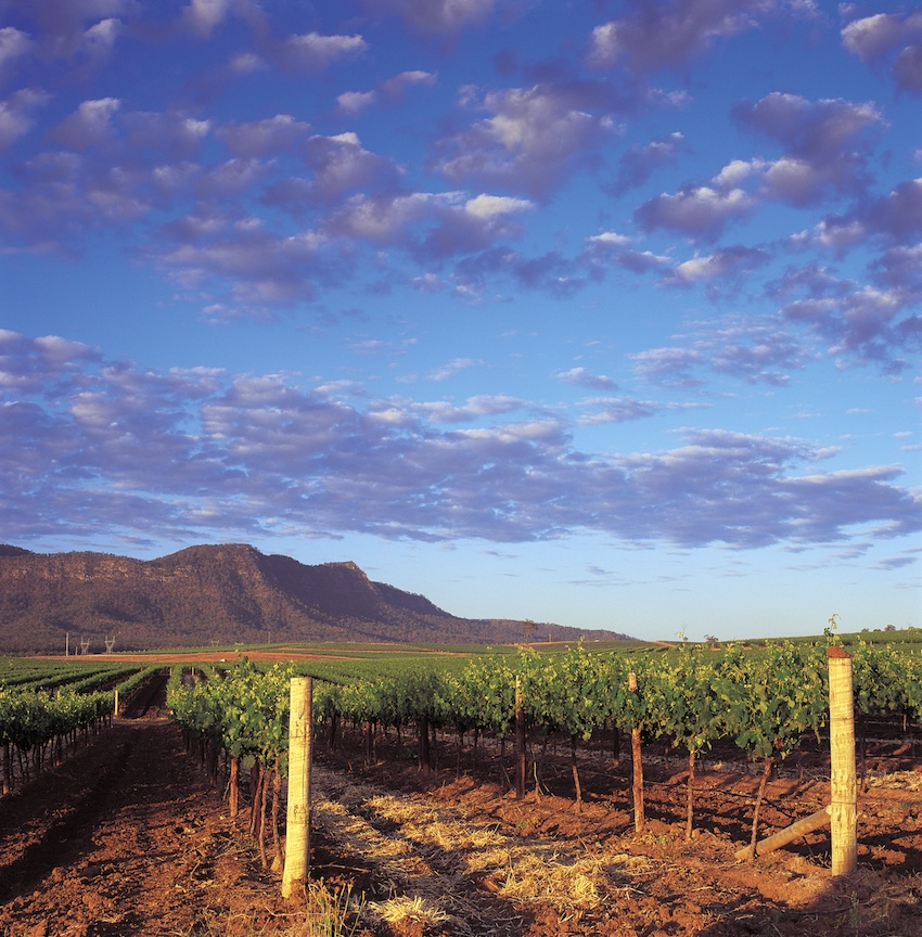 Best 10 Wine Destinations of 2013